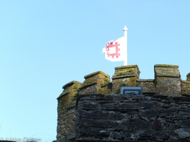 Dartmouth Castle 5