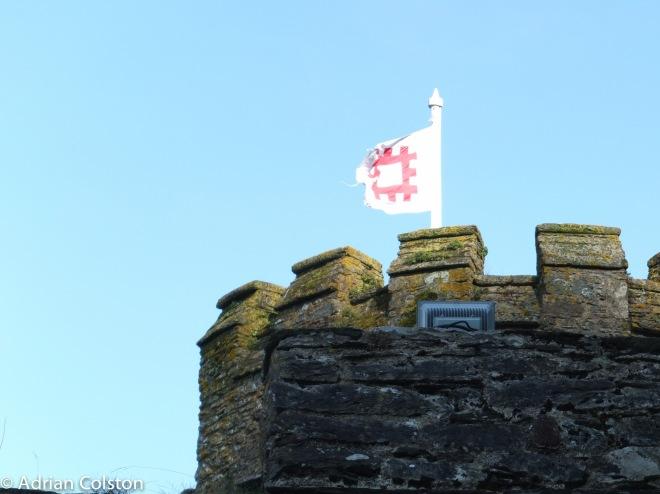Dartmouth Castle 5
