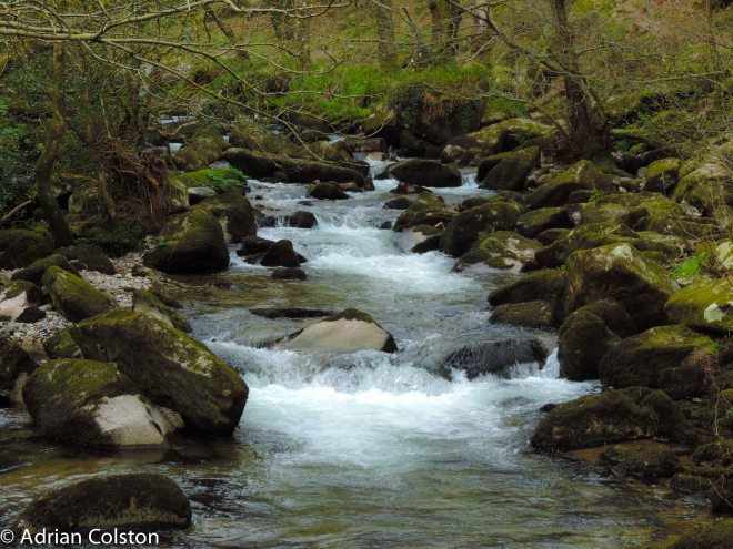 River Meavy 1