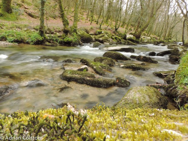 River Meavy 6