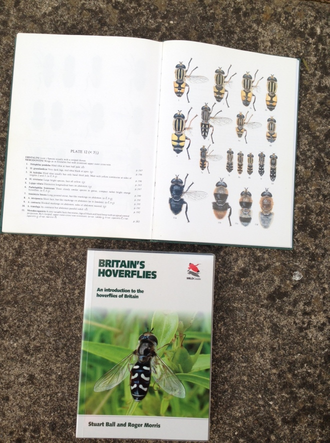 Hoverfly books