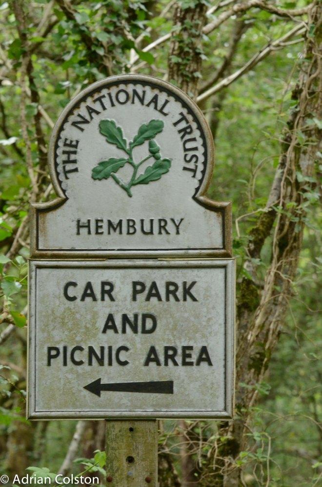 Hembury 6
