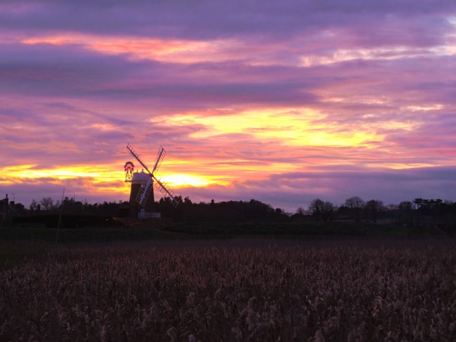 Cley1