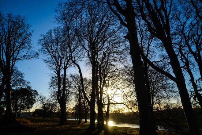 Holkham Park7