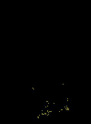 Leptura aurulenta