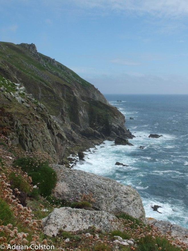 West Coast 3