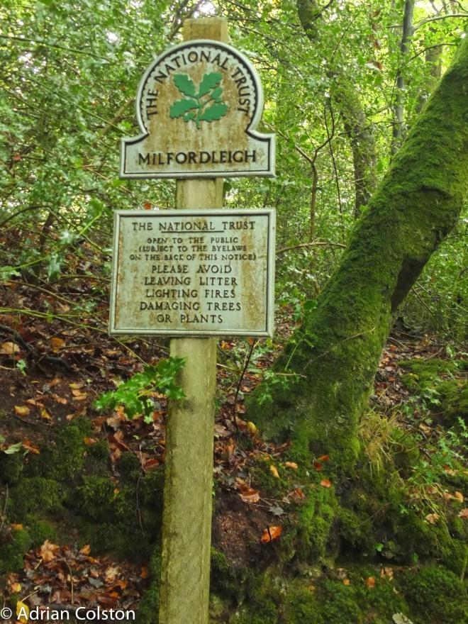 Milfordleigh 1