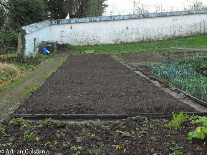Walled Garden 3