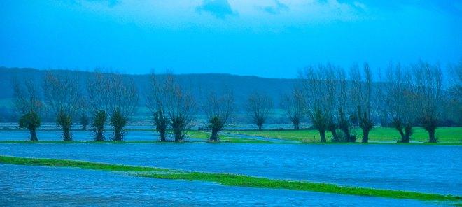 Levels Flooding 1