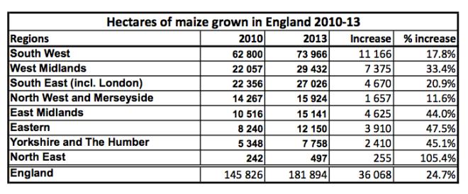 Maize date UK 2010-13