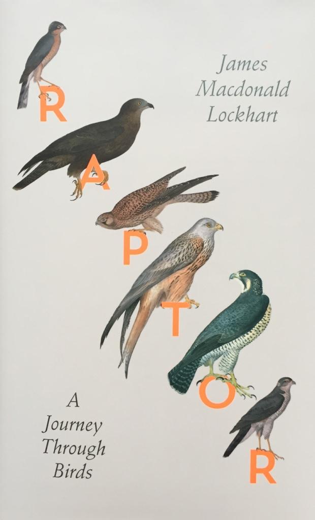 Raptors Lockhart