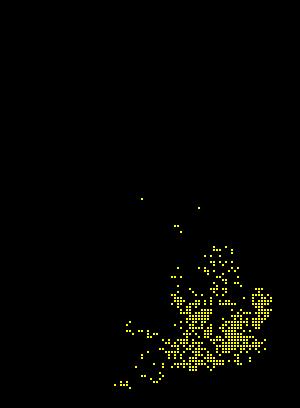Anthophora plumipes map