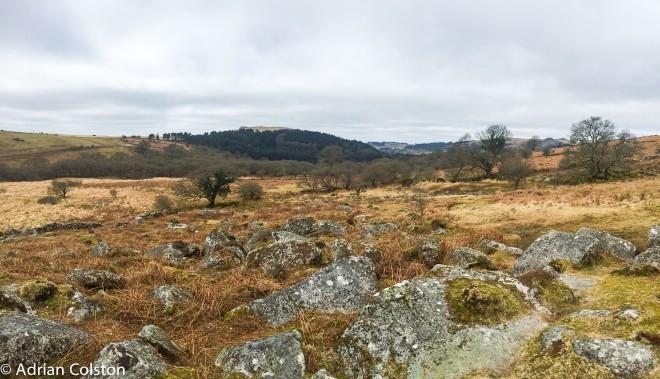 Cuckoo Rock panorama