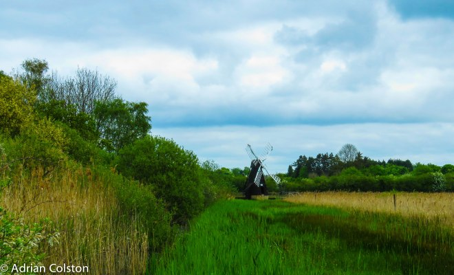 Wicken Fen 1