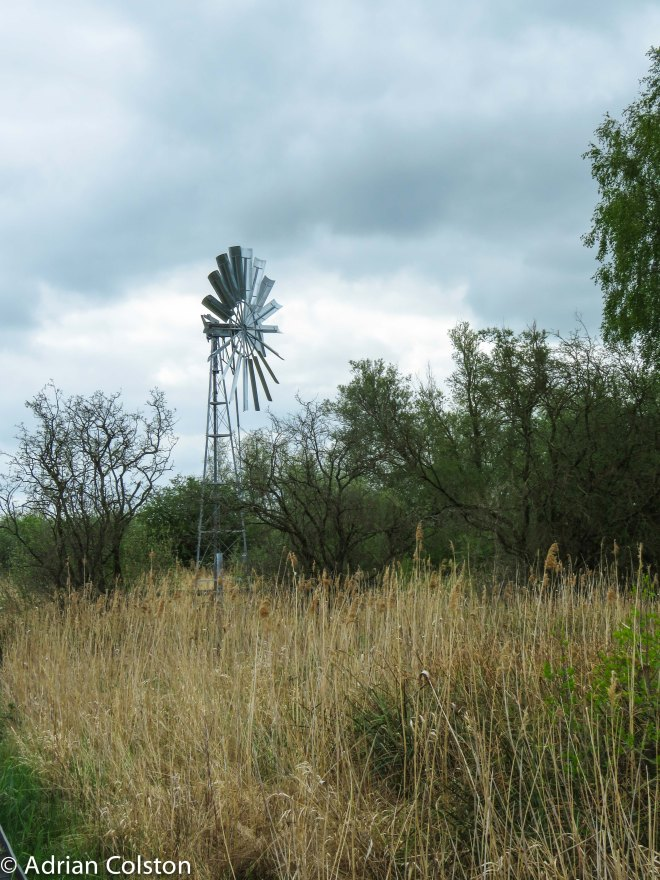 Wicken Fen 2