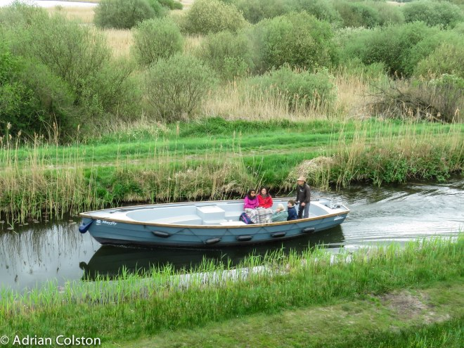 Wicken Fen 3
