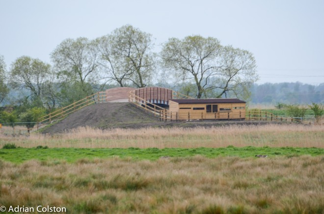 Wicken Fen 5