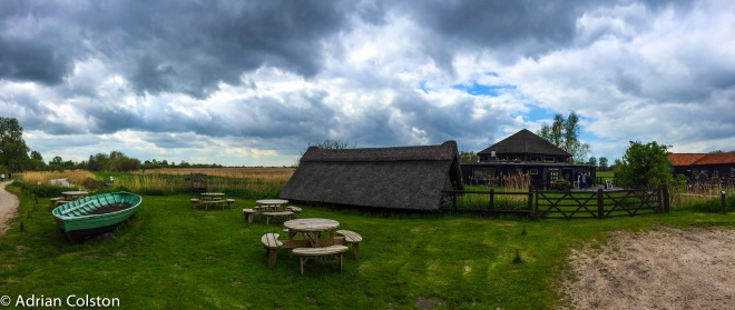 Wicken Fen 8