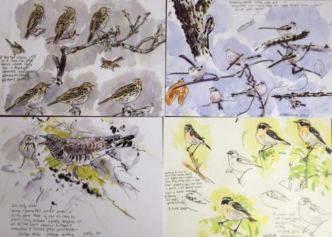 Postcards John Walters