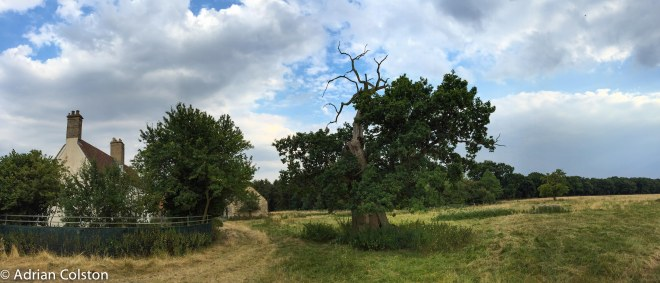 Denton Wood Farm
