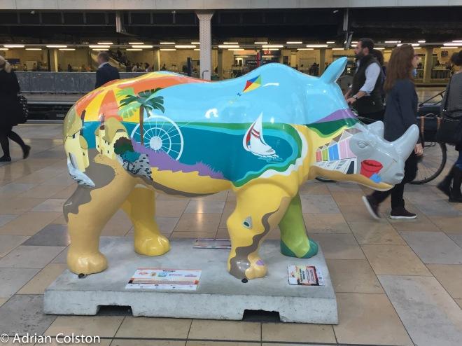 paddington-rhino