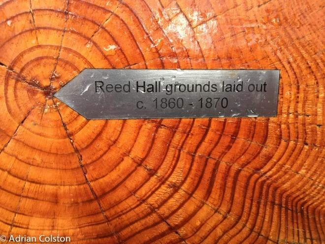 reed-hall-4