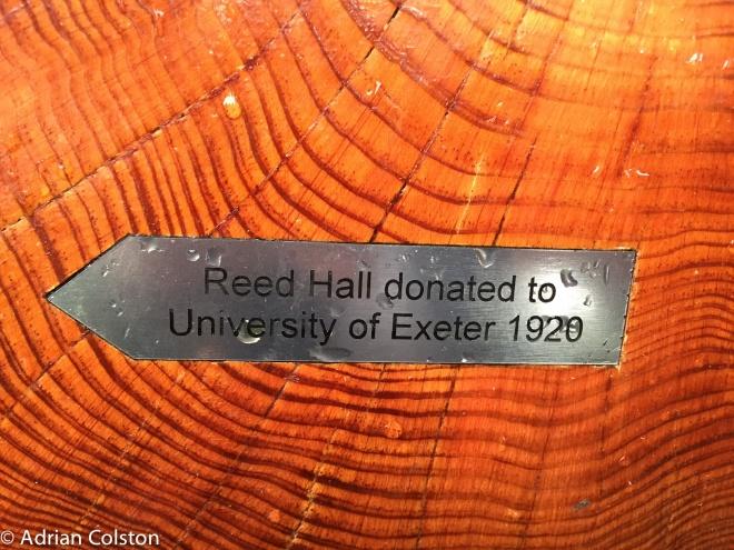 reed-hall-5
