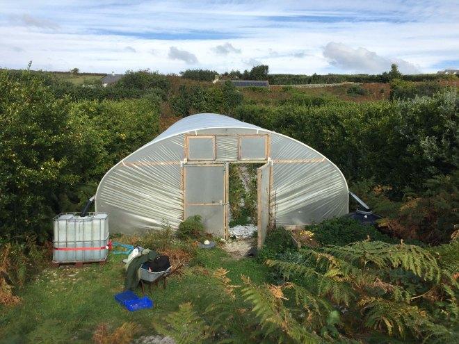 bryher-market-garden