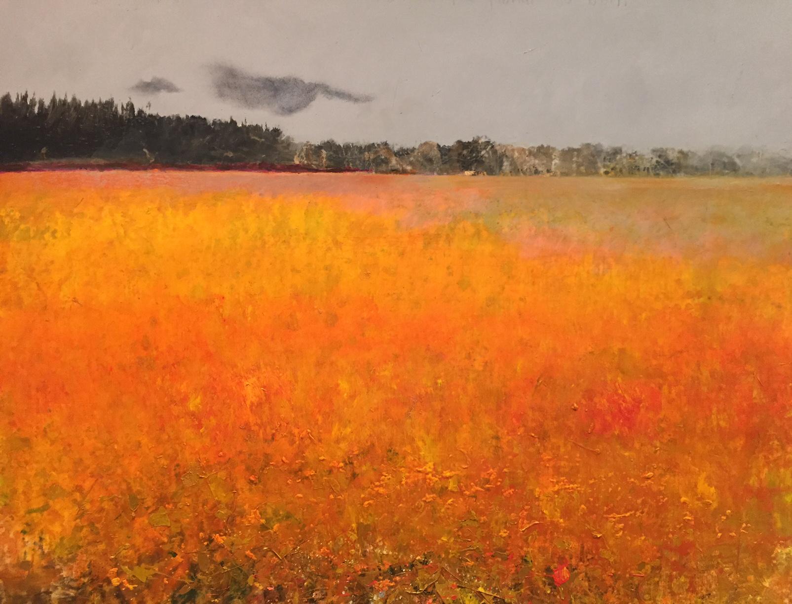 Kurt Jackson A Dartmoor Blog